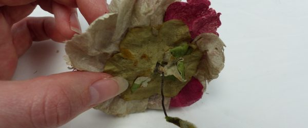 Artificial flowers from 18th century – Part 2